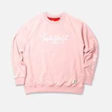 Try Applique Raglan - Pink