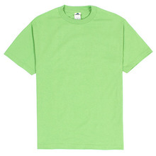 (1301)Adult Short Sleeve Tee - Mint