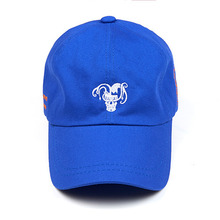 [Now or Never] X TSM Ball Cap - Royal Blue