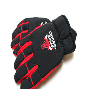 Chicago Bulls Logo Ski Gloves