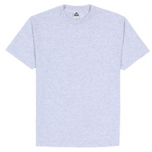 (1301)Adult Short Sleeve Tee - Ash
